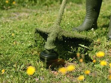 Grass striiming